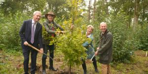 1.2million trees in Surrey