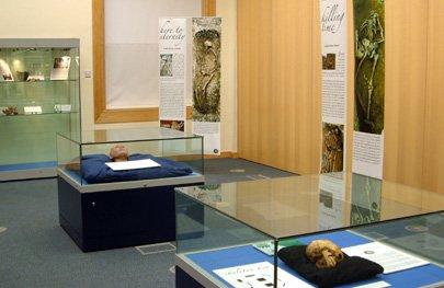 Exhibition at Surrey History Centre