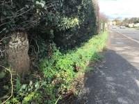 NE along Eastbourne Road towards South Godstone