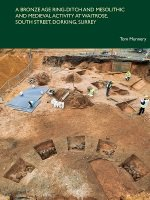 Waitrose archaeological site book cover
