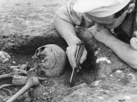 Skeleton being excavated