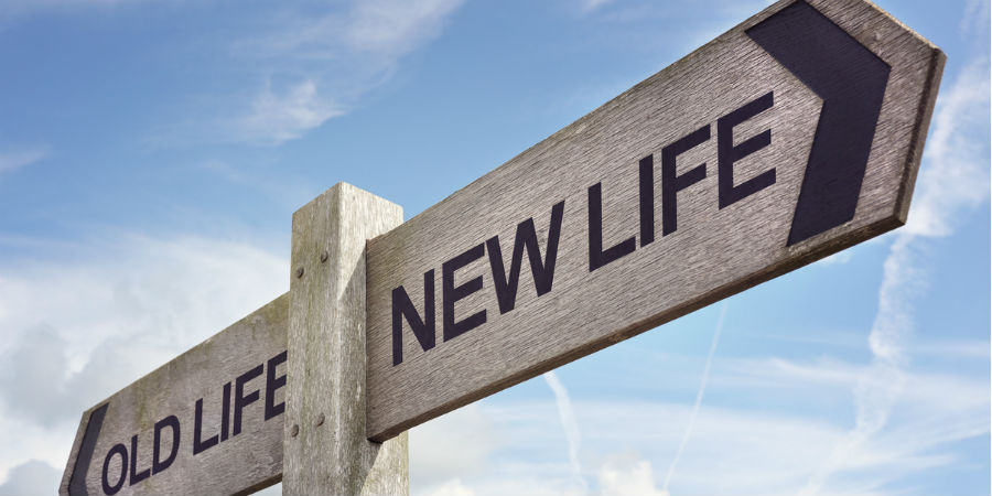 New life and old life wooden sign post
