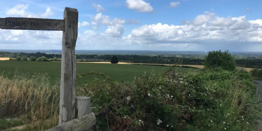 Explore Surrey's countryside this Summer and go on walks