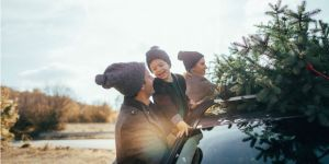 Family putting Christmas tree on the roof of car to take home