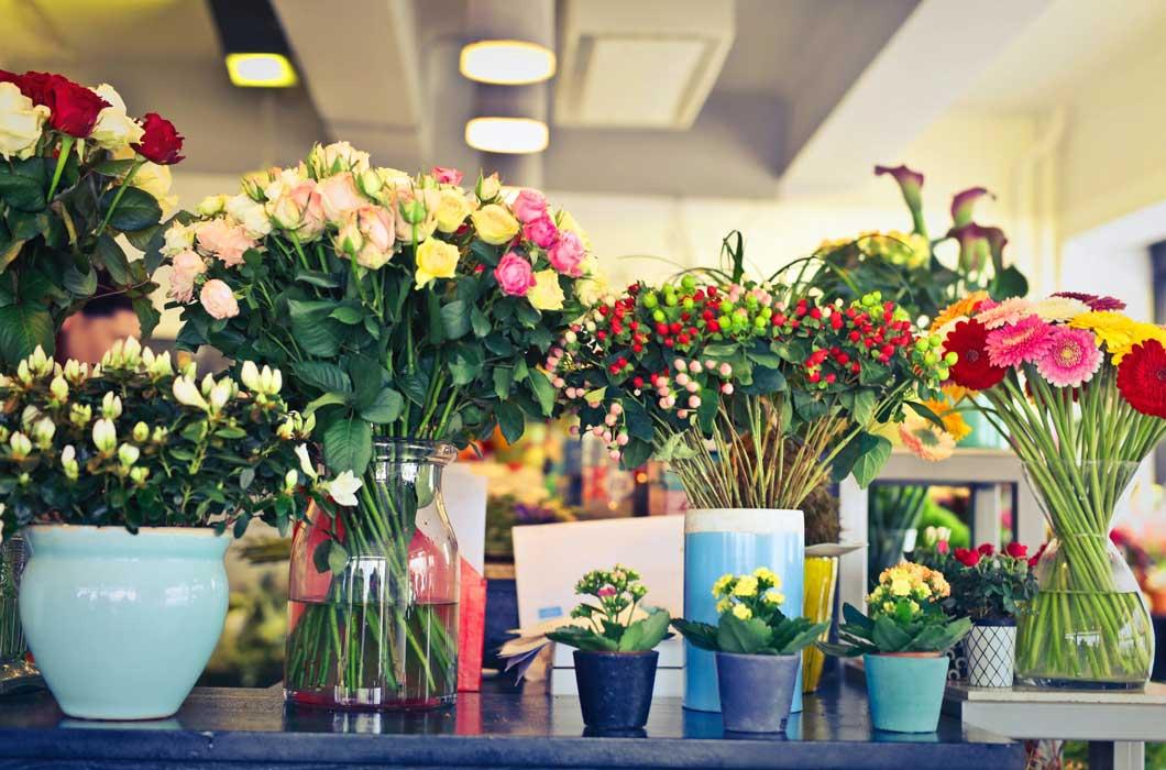 Flowers arranged in several vases