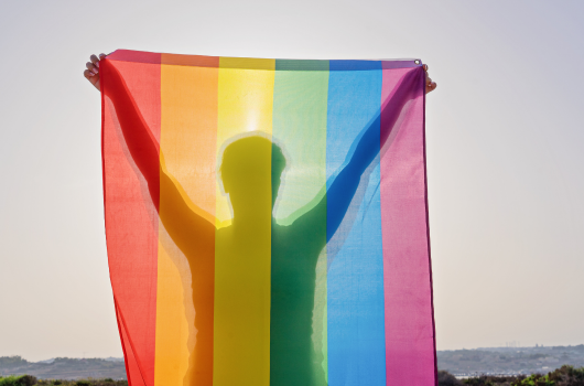 Person holding a multicoloured flag