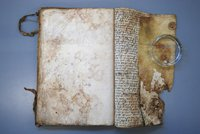 Document with water and mould damage