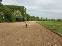 Fieldwalking at Langley Vale
