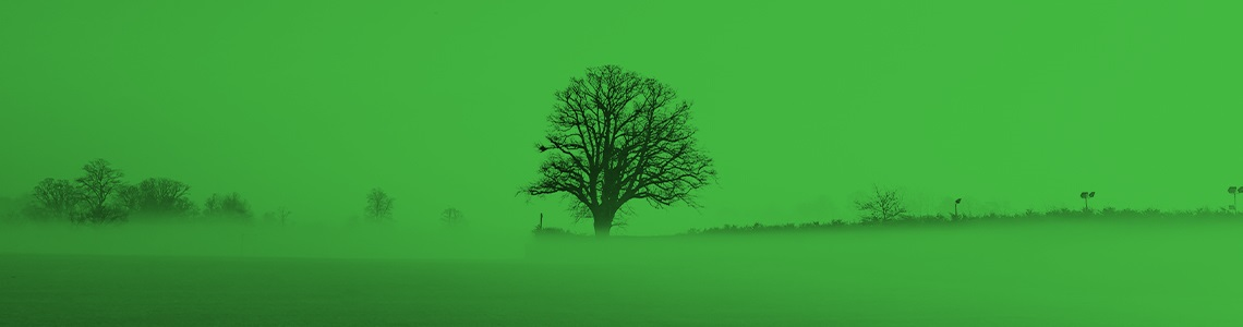 Find out how to get involved in Surrey's Greener Future