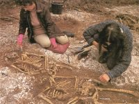 Excavations at Esso House of execution burials