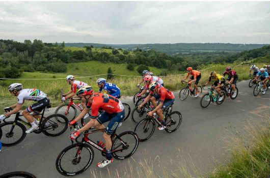 Professional cyclists on Box Hill