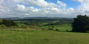 Countryside Consultation